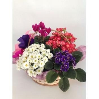 Cesta de Flores Original