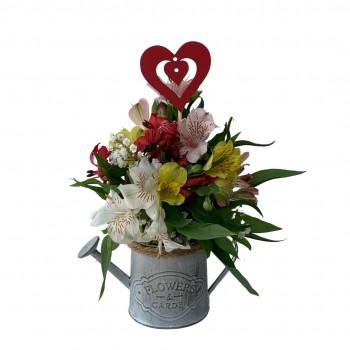 Regador Flores